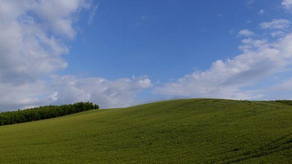 丘と空.jpg