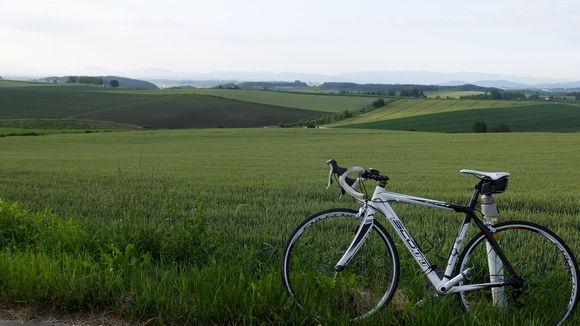 丘と自転車.jpg