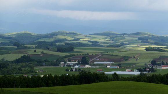 北西の丘.jpg